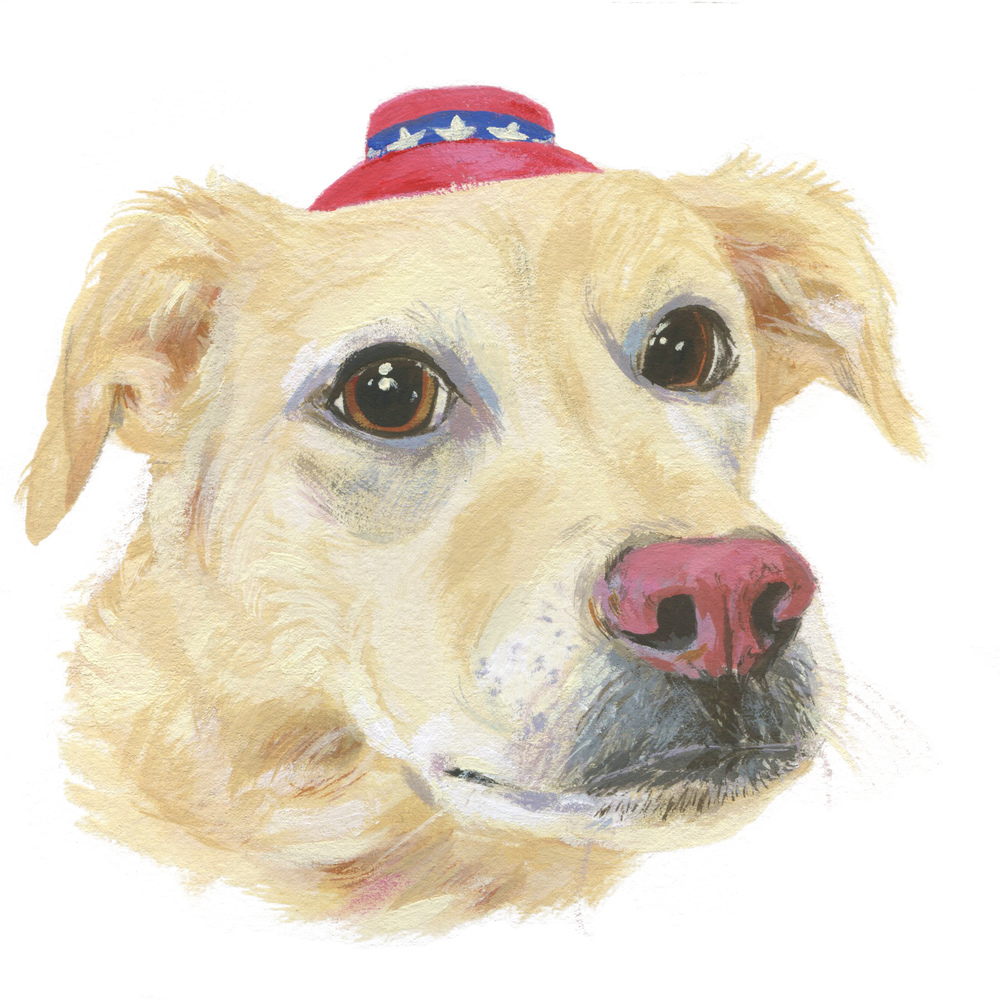 Pet Portrait_Abbi J.jpg
