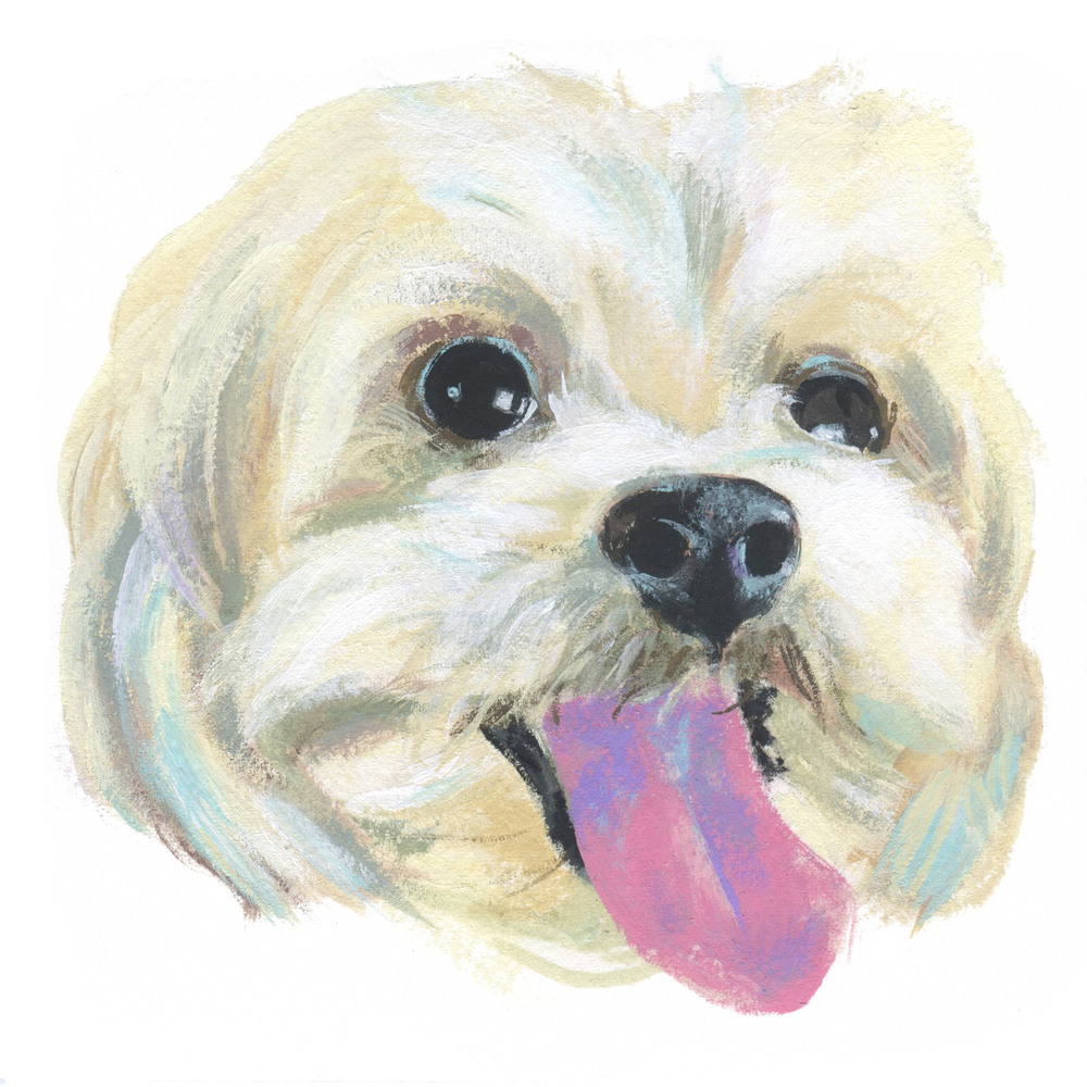 Pet Portrait_Alex Charak.jpg