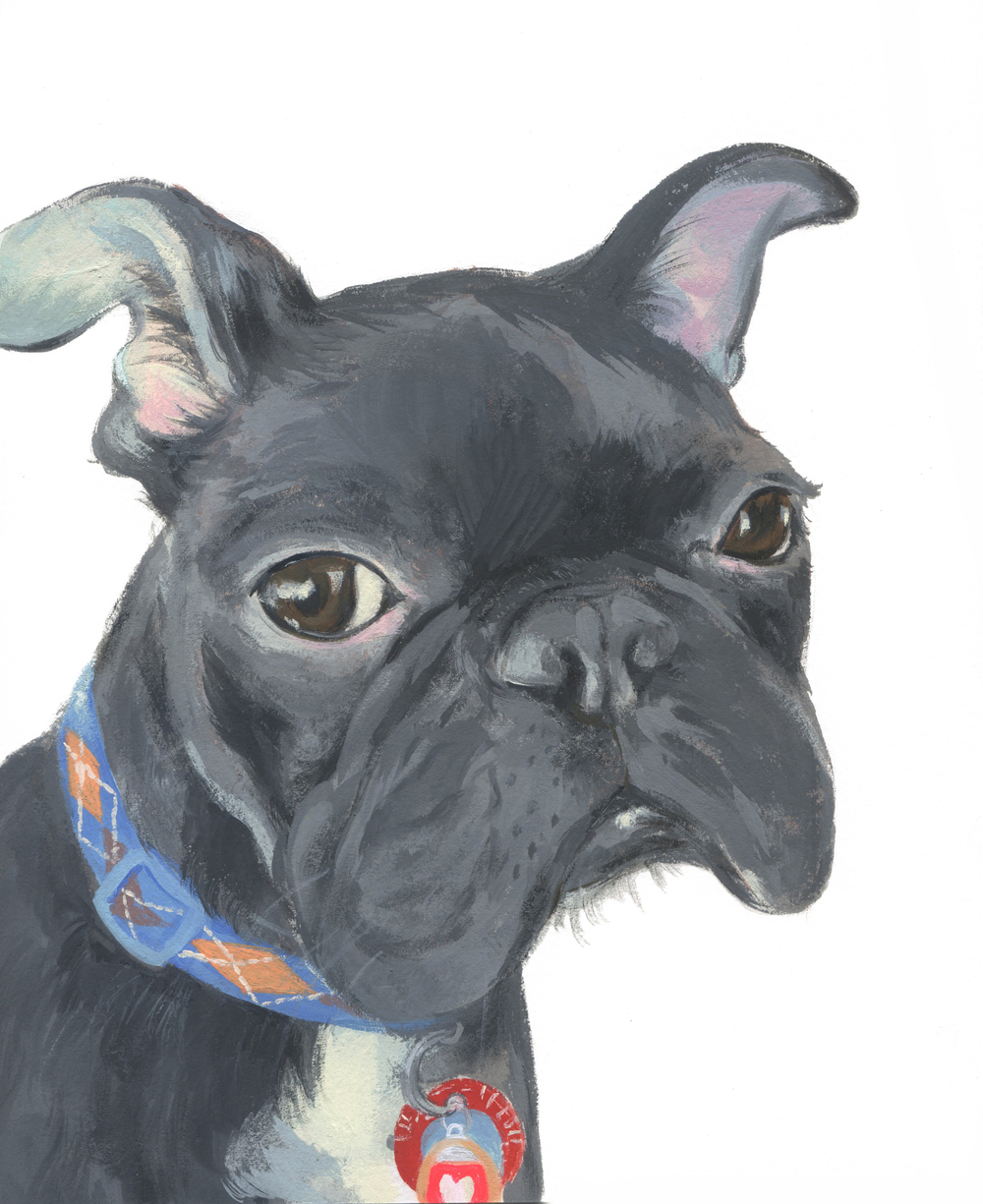 Pet Portrait_Devlyn.jpg