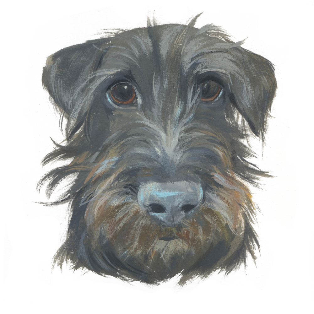 Pet Portrait_E.Maertens.jpg