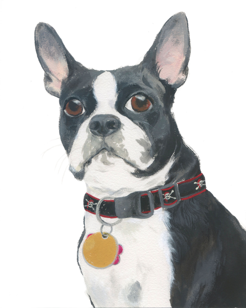 Pet Portrait_Gabrus.jpg