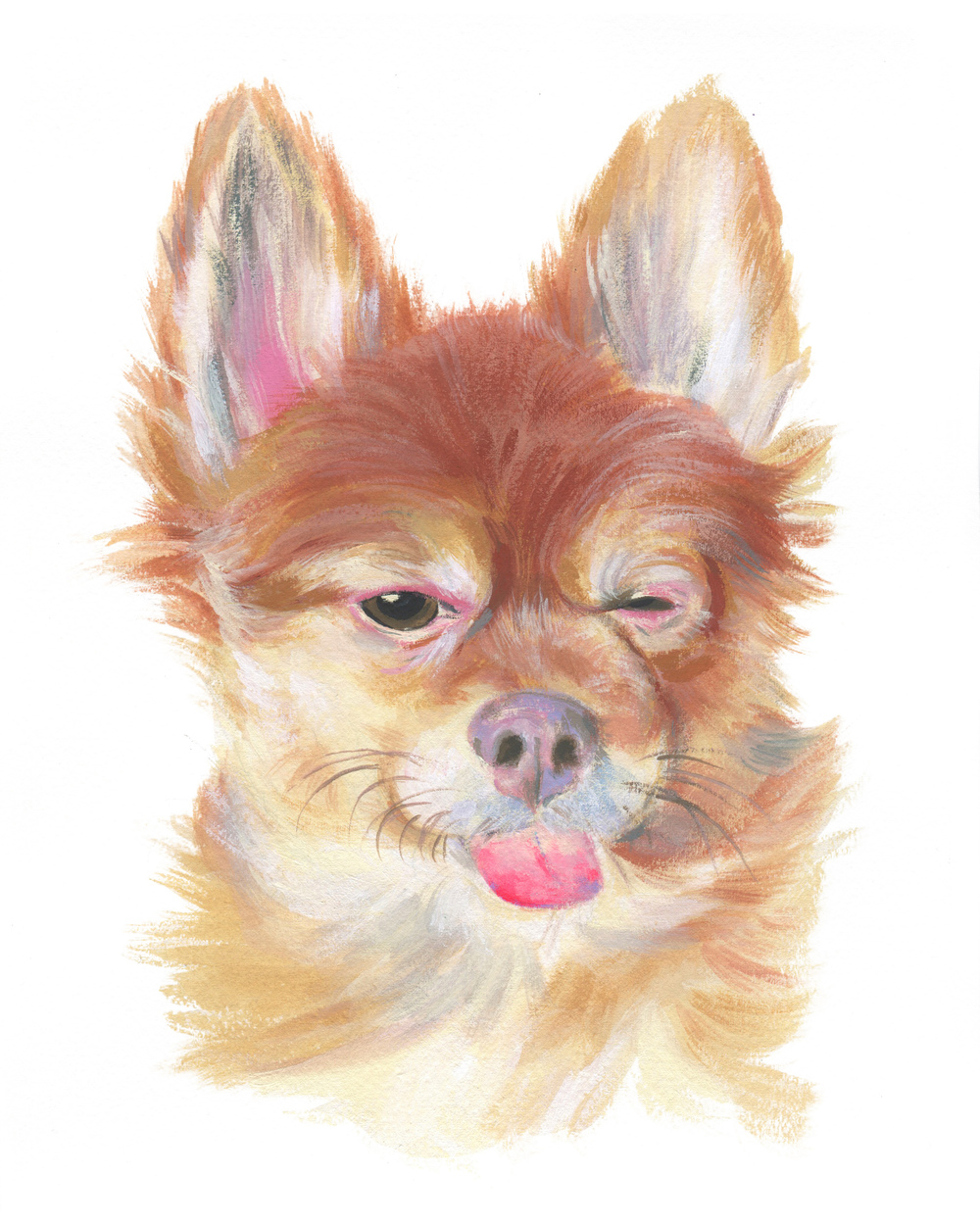 Pet Portrait_Howard Finkelstein.jpg
