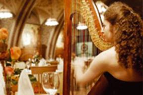 Rittersaal harpist