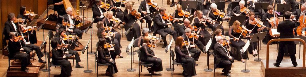 First Violins.jpg