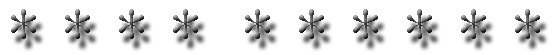 Line Seperator 1A B&W.jpg