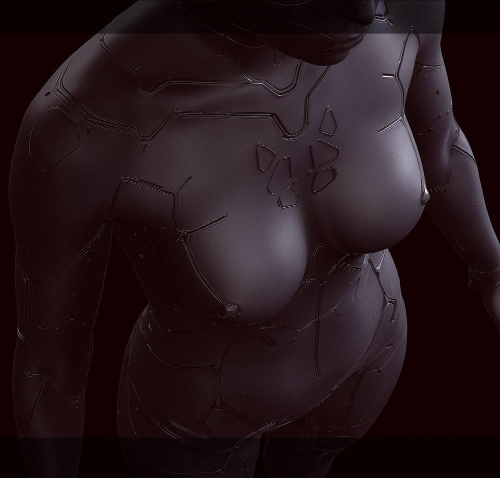 gits_body1.jpg