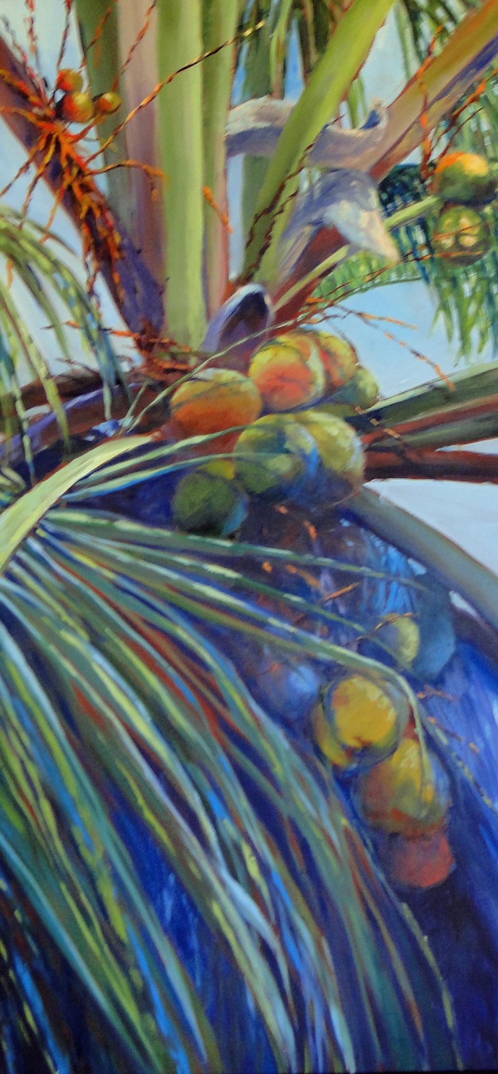 La Siesta Palm I