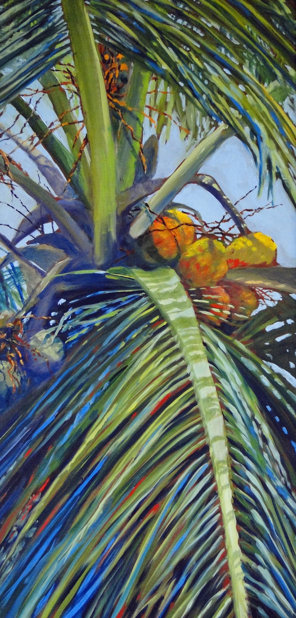La Siesta Palm II