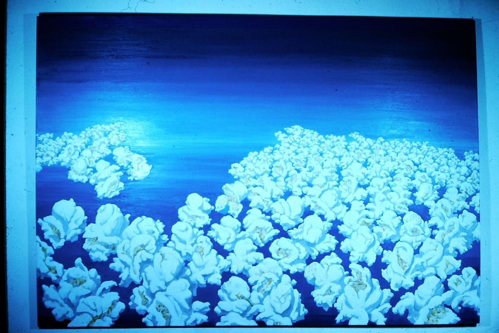 Popcorn Sky.
