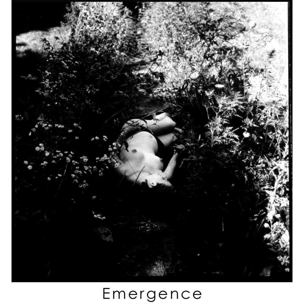 EMERGENCE  14 .jpg