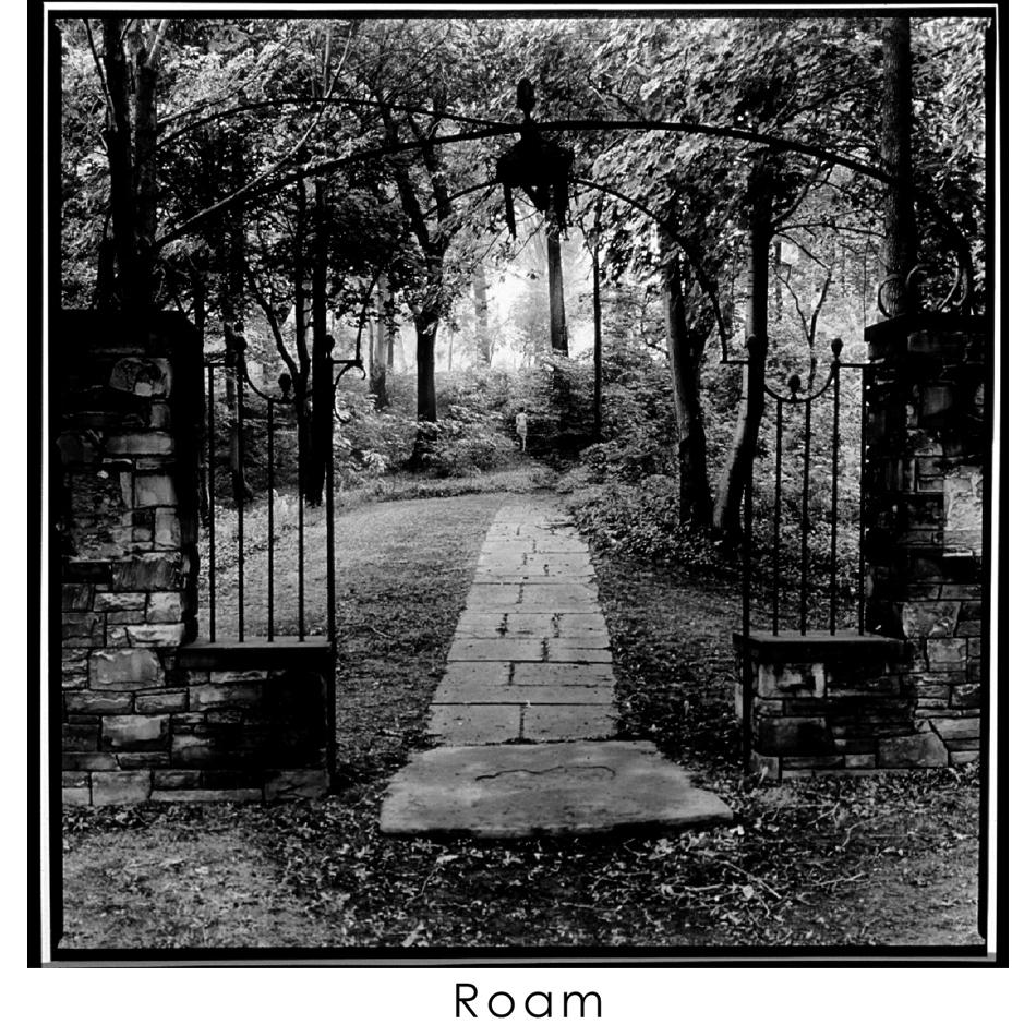 ROAM 14.jpg