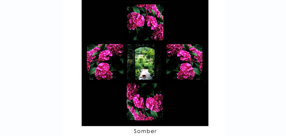 Somber A.jpg