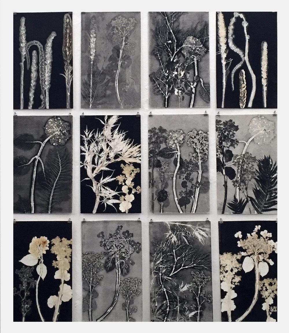 Florals .jpg