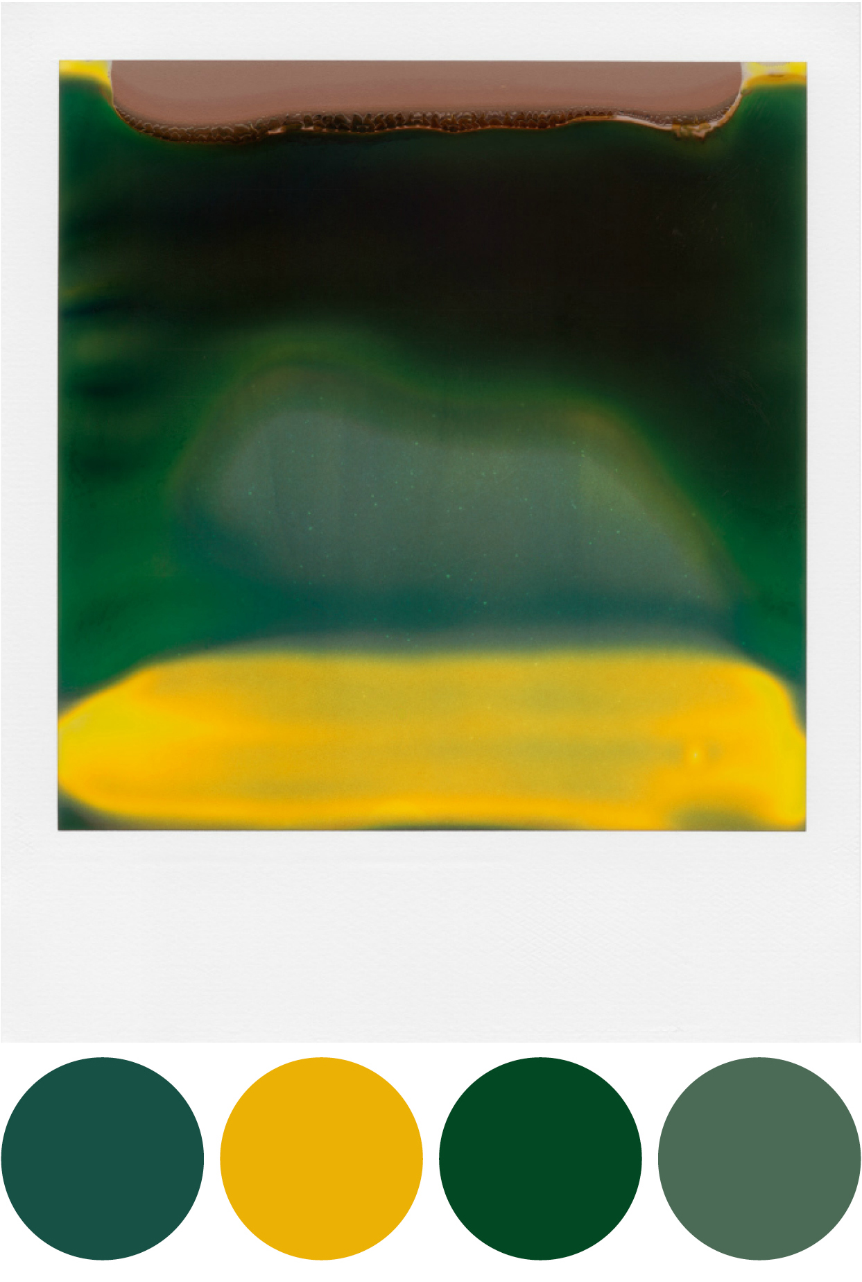 Color studies from polaroids4