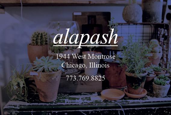 alapash