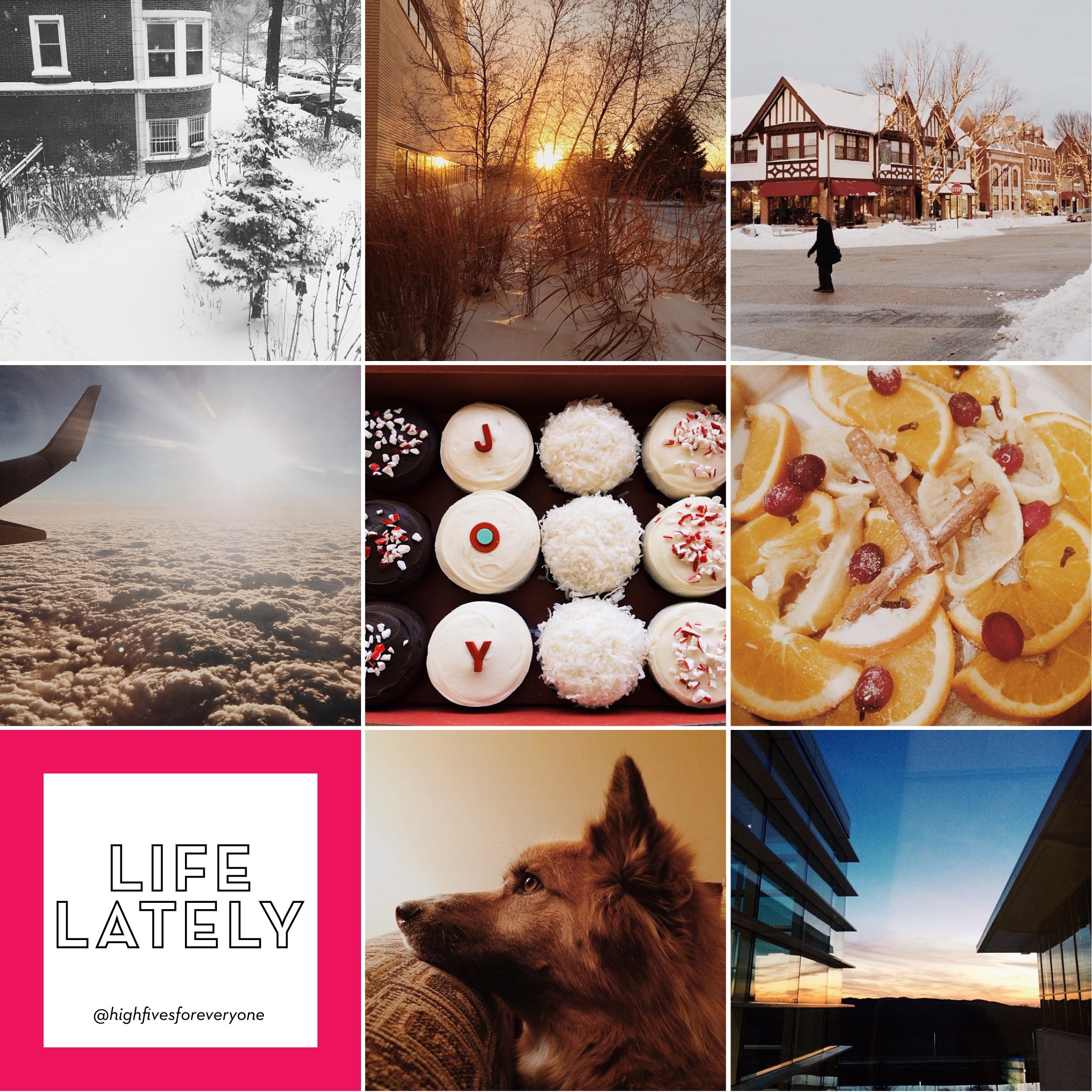 Life Lately January 14 2013 | High Fives for Everyone