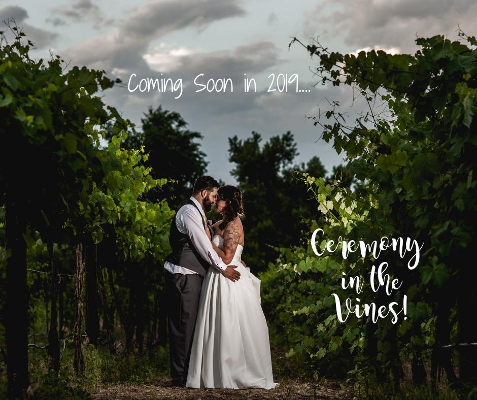 Ceremony in the Vines
