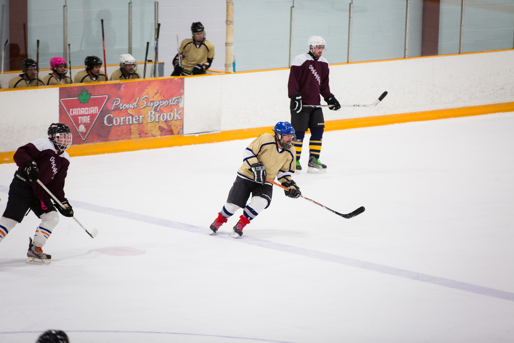 GrenfellCharityHockeyGame2016-April5-2016-36.jpg