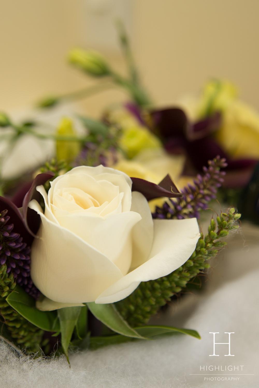 ll_flowers.jpg