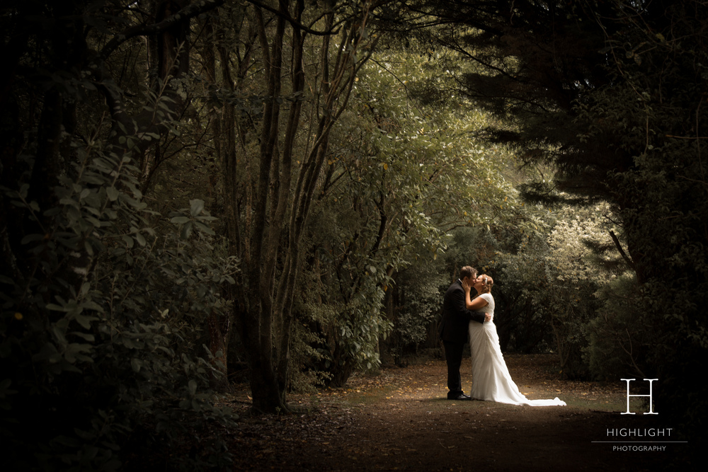 highlight_photography_wedding_new_zealand_forest.jpg