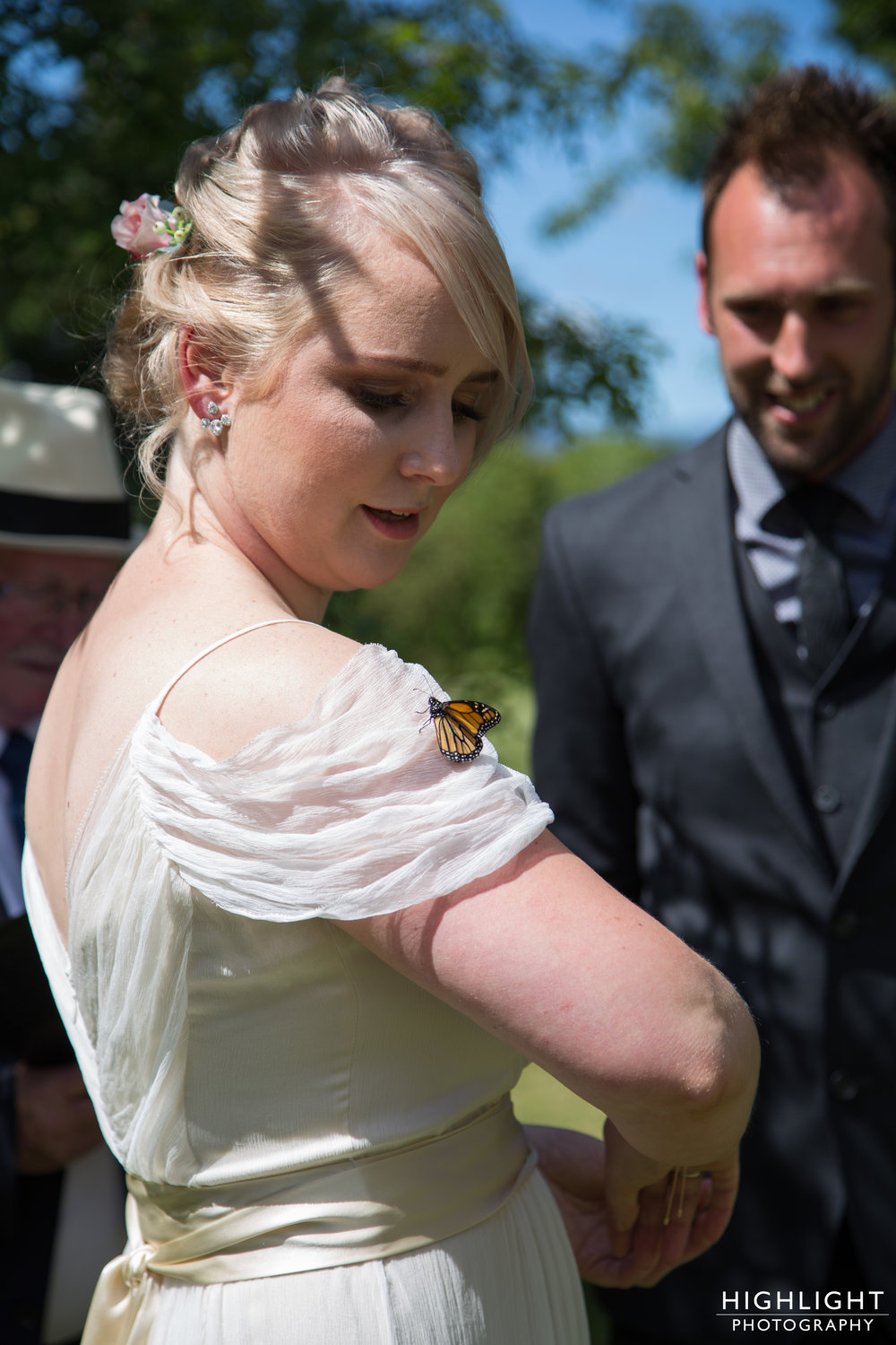 rose-johnny--butterfly-highlight-wedding-photography-palmerston-north-manawatu
