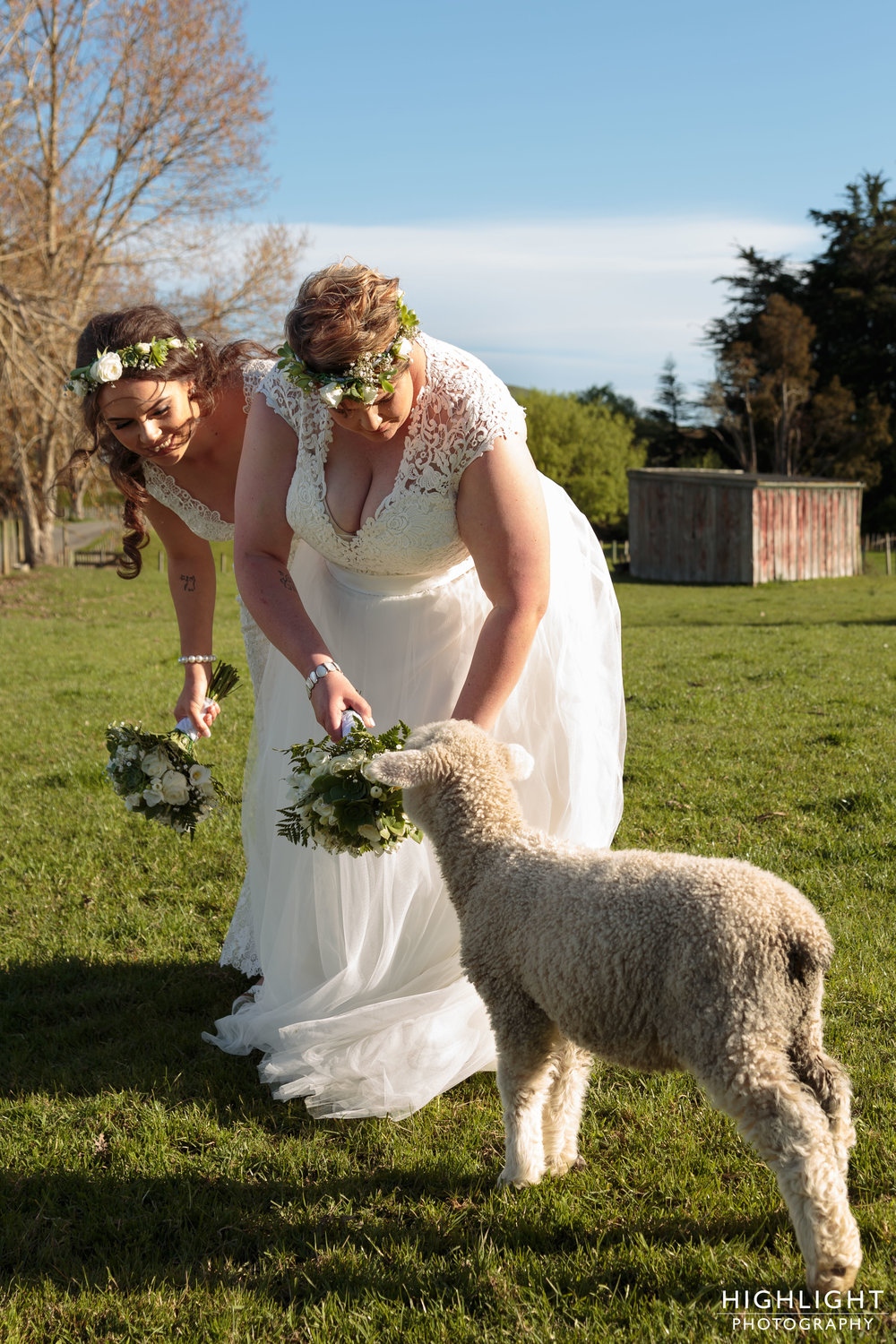 highlight_wedding_photography_makoura_lodge_manawatu_new_zealand-115.jpg