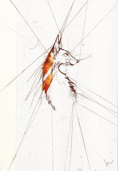 """The Fox""  by Joey Rudd.  Watercolour and Graphite"
