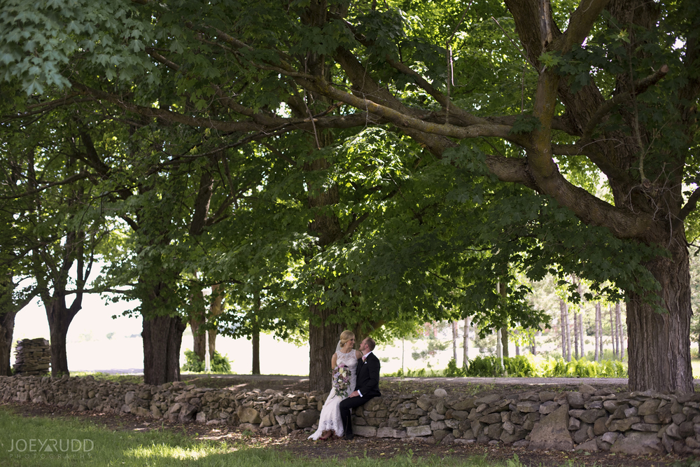 Kemptville Wedding by Ottawa Wedding Photographer Joey Rudd Photography Maple Tree Couple