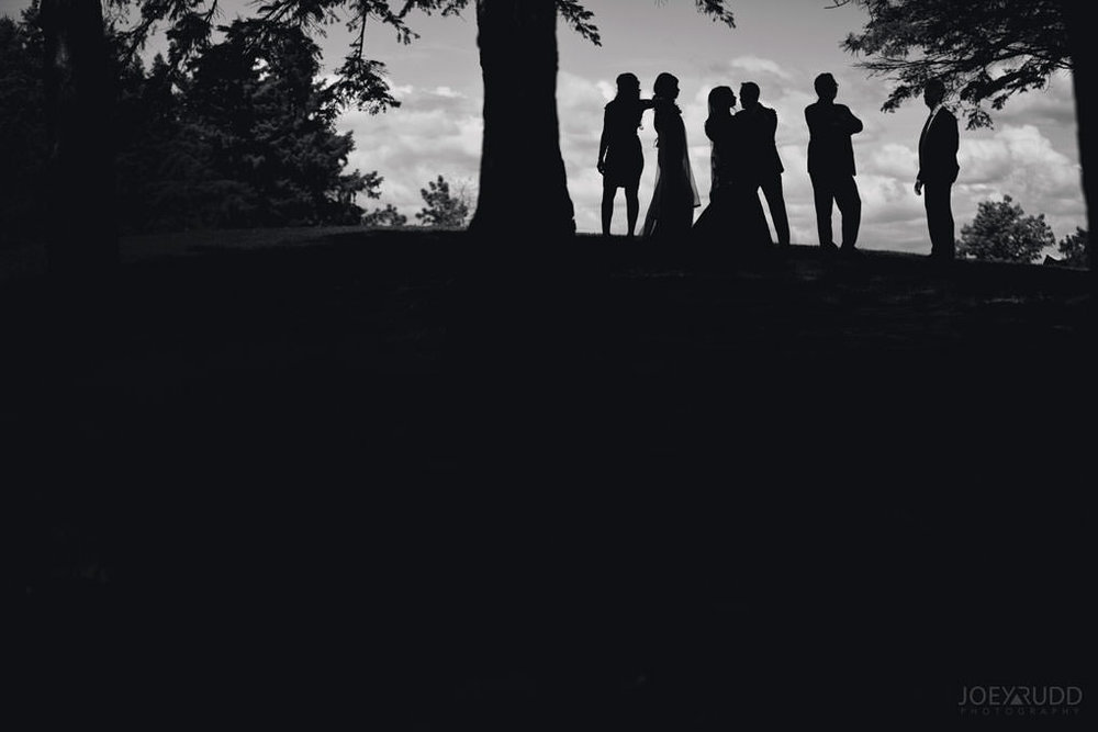 Ottawa Wedding at Andrew Hayden Park Next and Brookstreet Hotel by Ottawa Wedidng Photographer Joey Rudd Photography Wedding Party Silhouette Dramatic