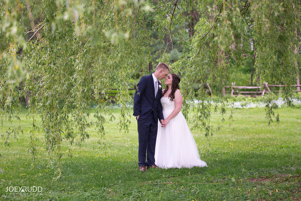 Wedding Perth Stewart Park Code's Mill Ottawa Wedidng Photographer Joey Rudd Photography Couple Under WIllows