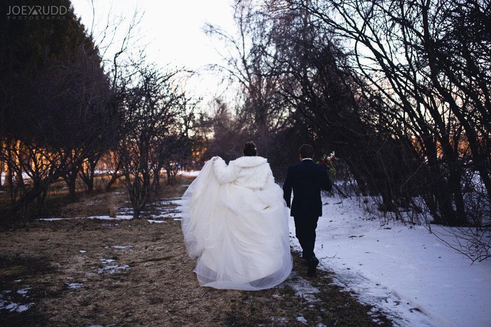 Elopement Wedding Officiant, Elopement Wedding Photographer, Ottawa Wedding Photographer, Ottawa Wedding Photography, Orchard