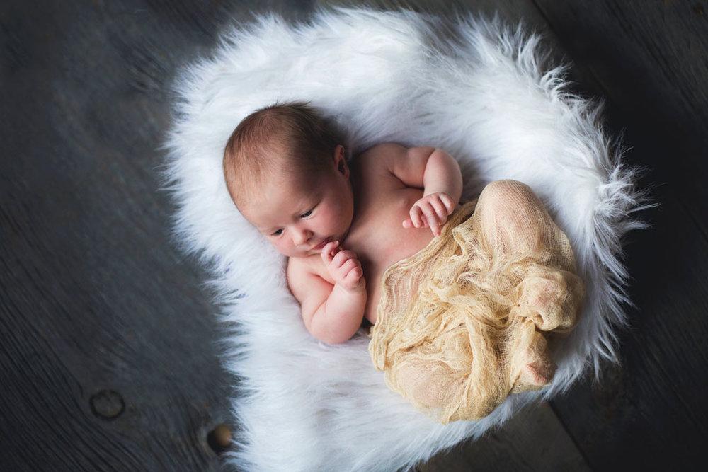22015_10_08---Baby-Sadie-052.jpg