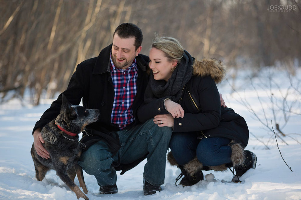 Mer Bleue Engagement, Ottawa Engagement, Engagement Photos, Engagement Photographer, Ottawa Wedding Photographer, Joey Rudd Photography, Ottawa Photographer, Winter Photos, Photo Location, Posing, Dog