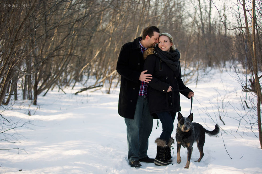 Mer Bleue Engagement, Ottawa Engagement, Engagement Photos, Engagement Photographer, Ottawa Wedding Photographer, Joey Rudd Photography, Ottawa Photographer, Winter Photos, Photo Location, Posing, Dog, Winter