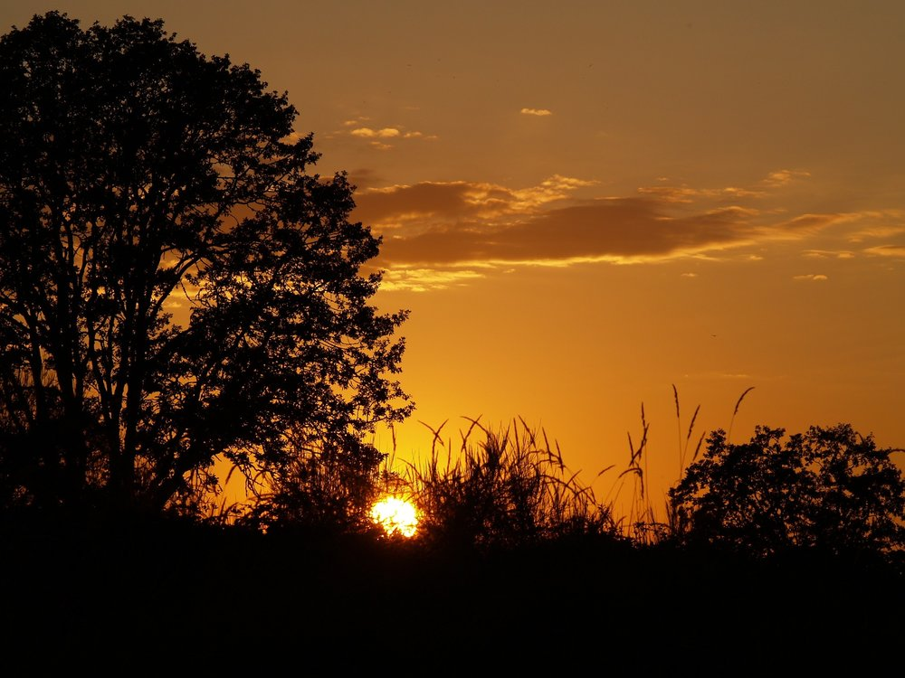sunset-1508208_1920.jpg