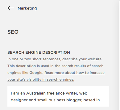 lilanigoonesena-squarespace-seo-marketing-settings