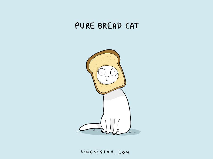cat-puns-002-57a9d03becf02__880.jpg