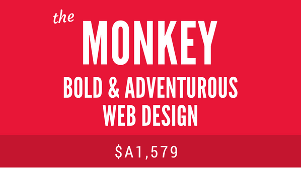 The Monkey web design package - friendly, adventurous Squarespace web design lilanigoonesena.com