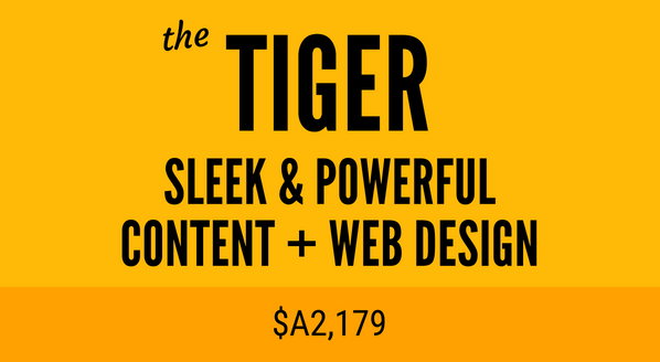 The Tiger web design package - powerful Squarespace web design and SEO lilanigoonesena.com