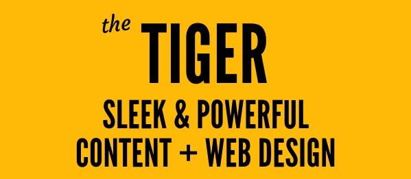 The Tiger web design package - powerful Squarespace web design and SEO lilanigoonesena.com