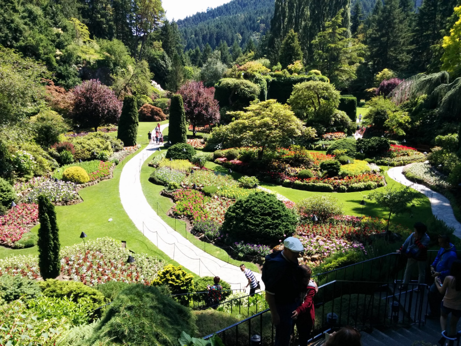 The Sunken Garden: The site of the original limestone quarry before it was converted into this beautiful garden.