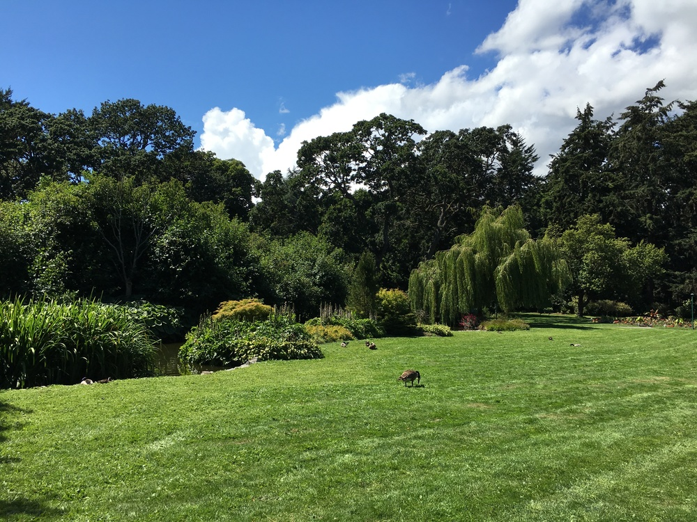 beacon-hill-park-victoria