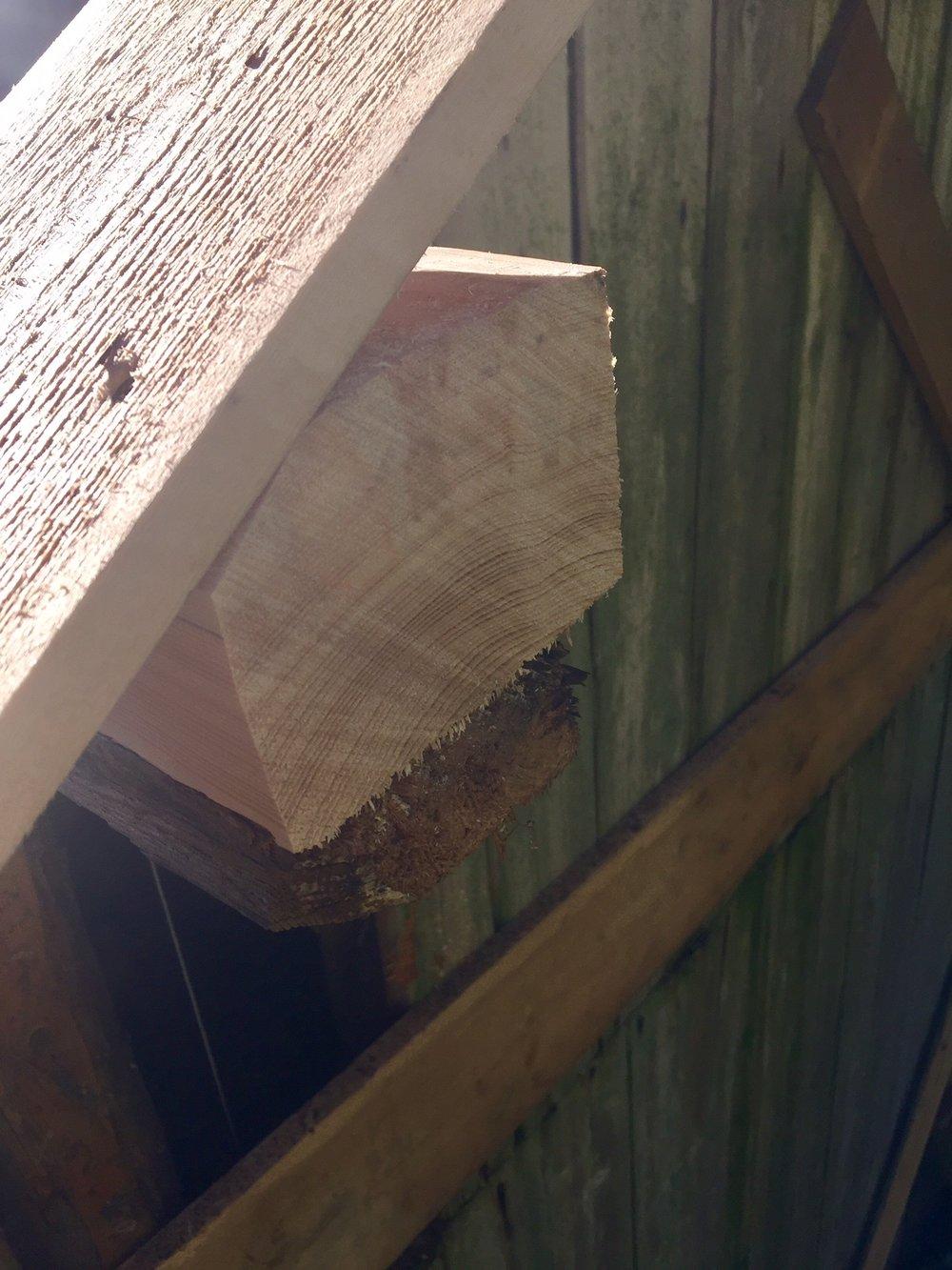 Nederste takås på det nordøstre hjørnet hadde skader på enden og ny friskt materiale måtte settes inn.