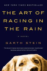 The Art of Racing in the Rain.jpg