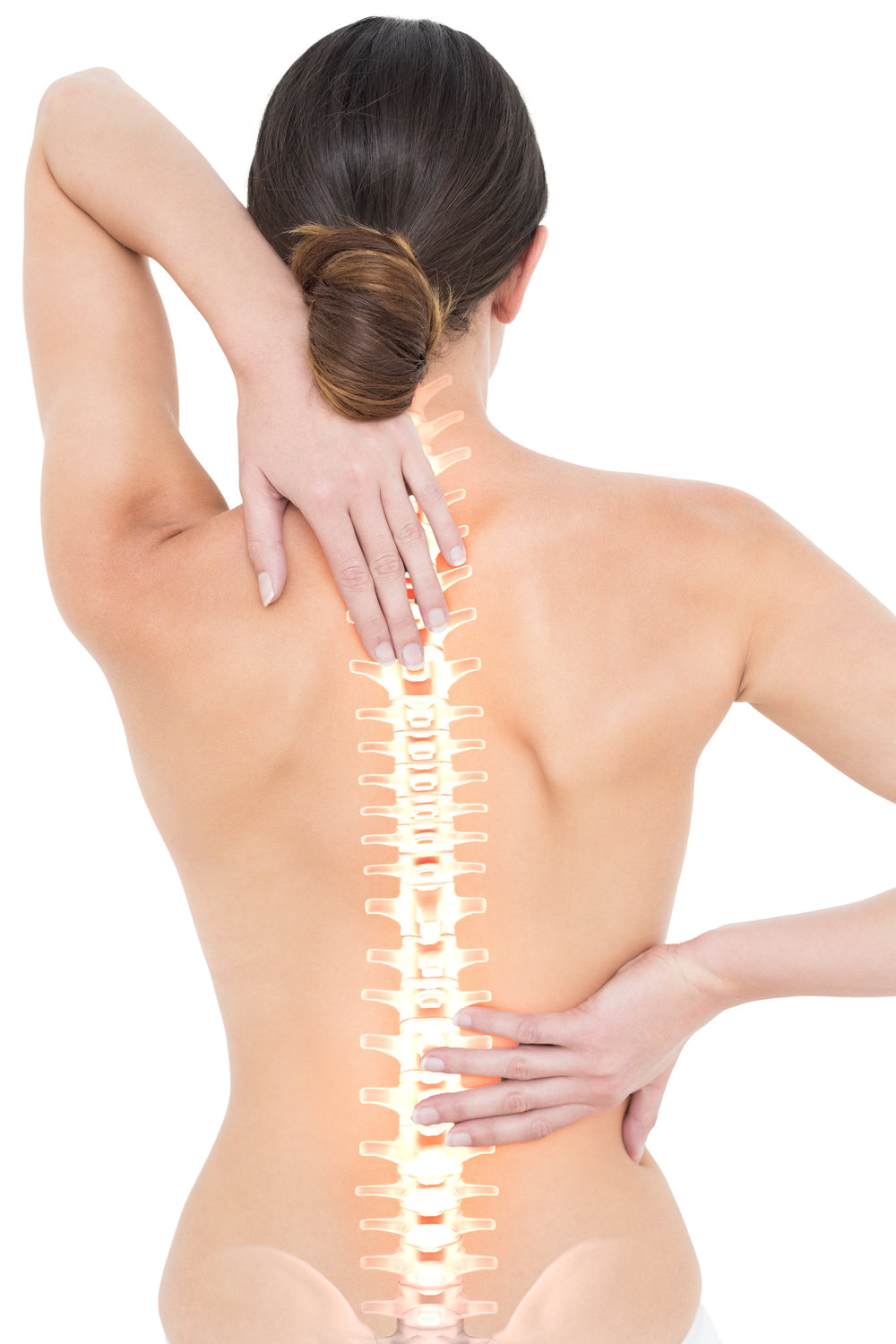 womans spine.jpg