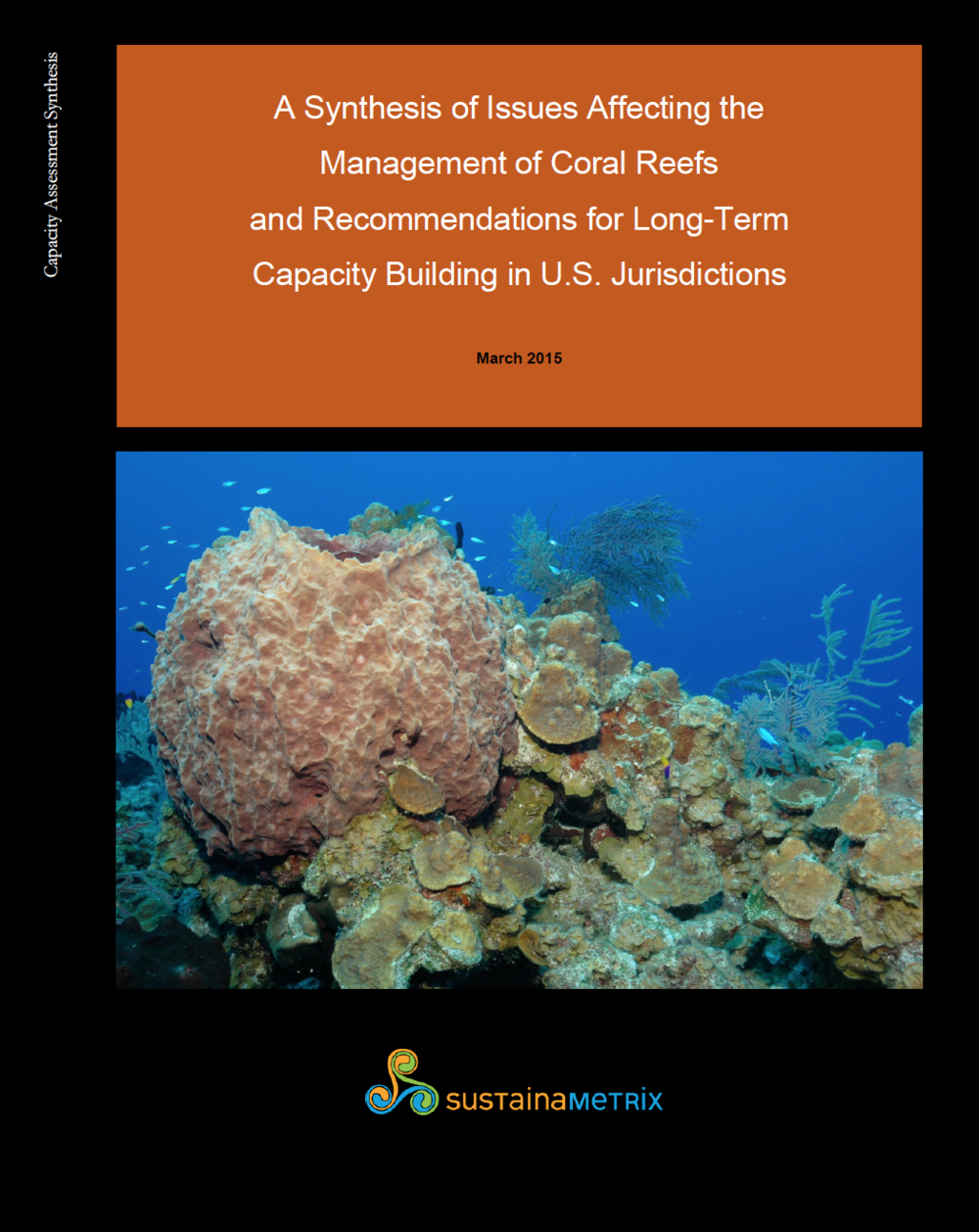 Capacity Assessment for NOAA - There are seven US Flag Coral Reef jurisdictions: Florida, the US Virgin Islands, Puerto Rico, Guam, American Samoa, Hawaii and the Commonwealth of the Northern Mariana Islands. All manage coral reefs and all face a unique combination of challenges in doing so. We provided NOAA with seven capacity assessments and seven reports analyzing the issues facing each jurisdiction, measuring their capacity to face those challenges and recommendations for building management capacity.