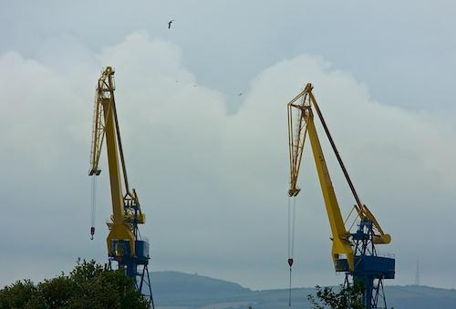 Cranes….right?