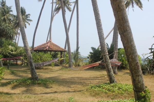 Max Wadiya, Sri Lanka is like being on your own desert island