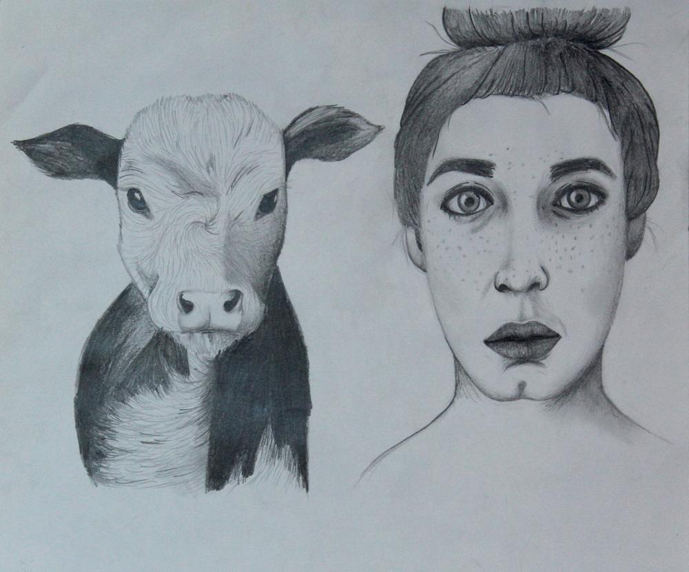 Lady Cow.JPG