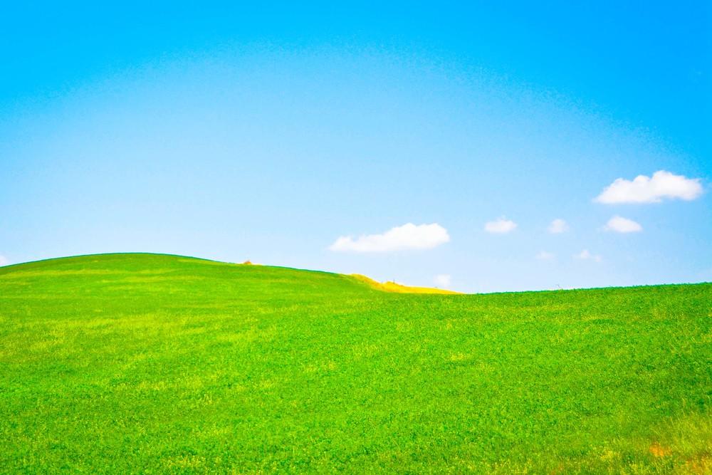 tuscany web-1.jpg